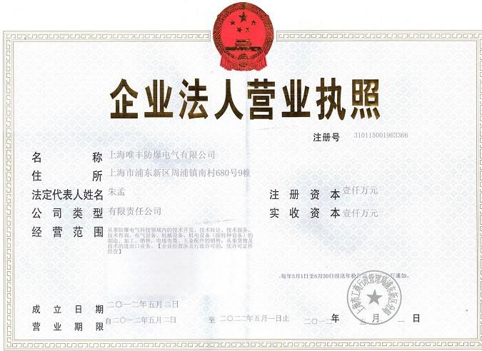上海唯丰雷电竞app官方下载电气raybet雷电竞app