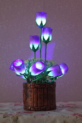 LED干花制造商