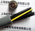 上海宏陽電線電纜有限公司