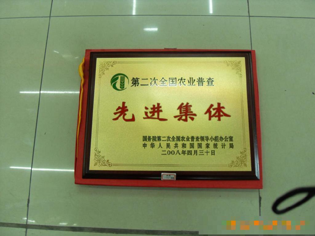先进集体奖牌,佛山; 广州市梦焕工艺美术品有限; 木质奖牌制作,广东图片