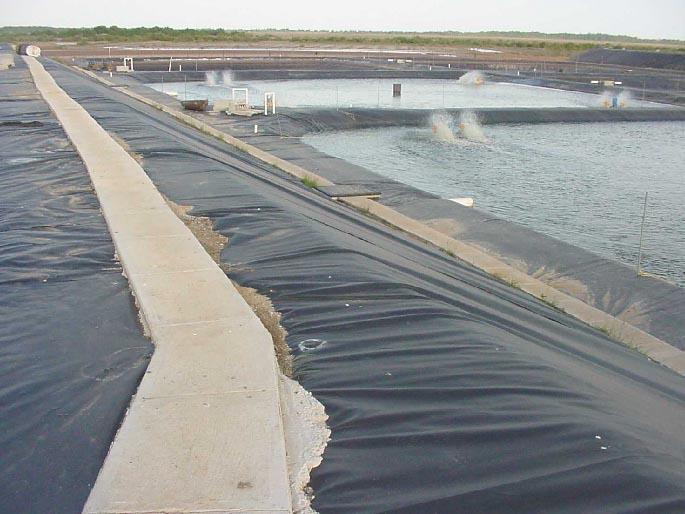 甘肃金昌污水池防漏土工膜施工图片 路面加固