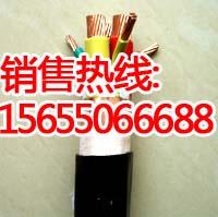 供应NH-BPGGP2变频电缆