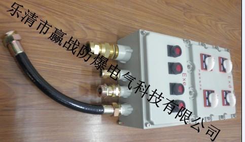 防爆控制箱BXK69系列 防爆箱參數 BXK防爆控制箱圖片廠家生產