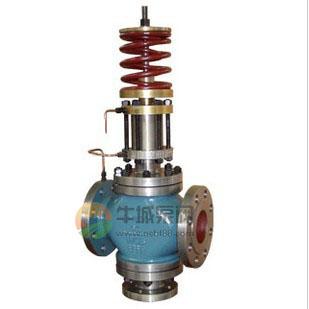 自力式多功能泵再循环调节阀图片