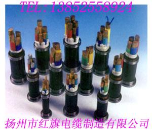 湖南船用電纜 廠家直銷13852558924