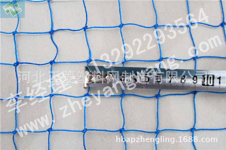 养鸡网生产厂家|现货供应养鸡网|大量处理养鸡网