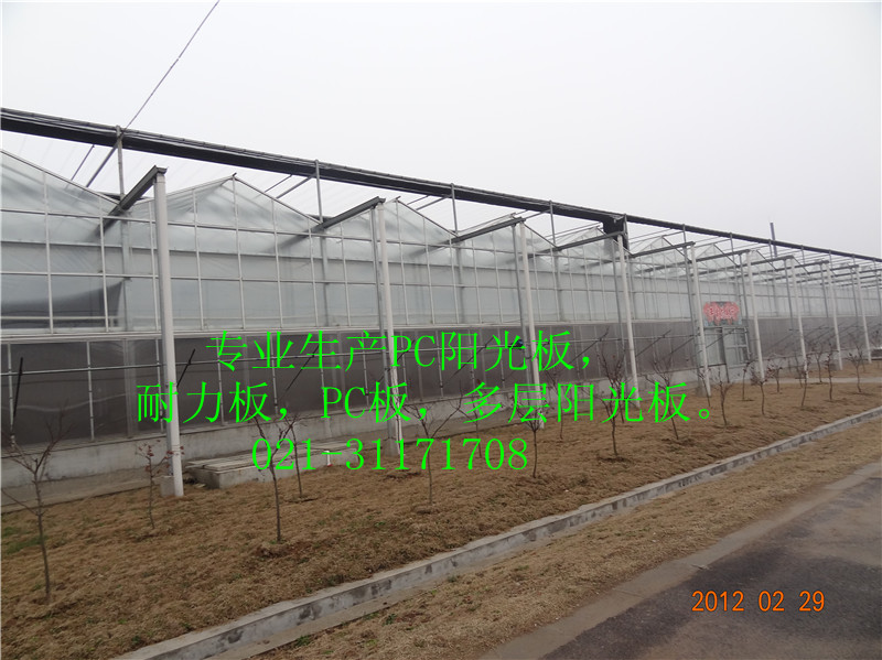 南通pc阳光板温室大棚价格