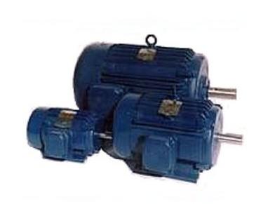 NEMA 超高效三相异步电动机