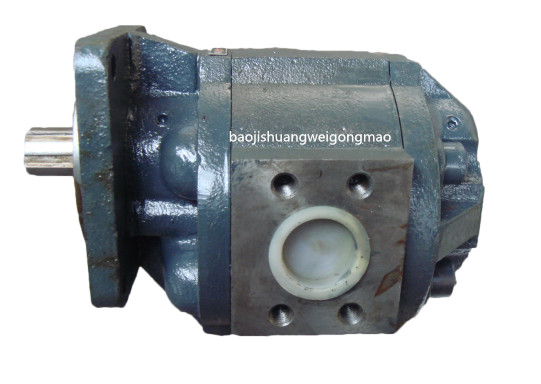 左旋齿轮油泵