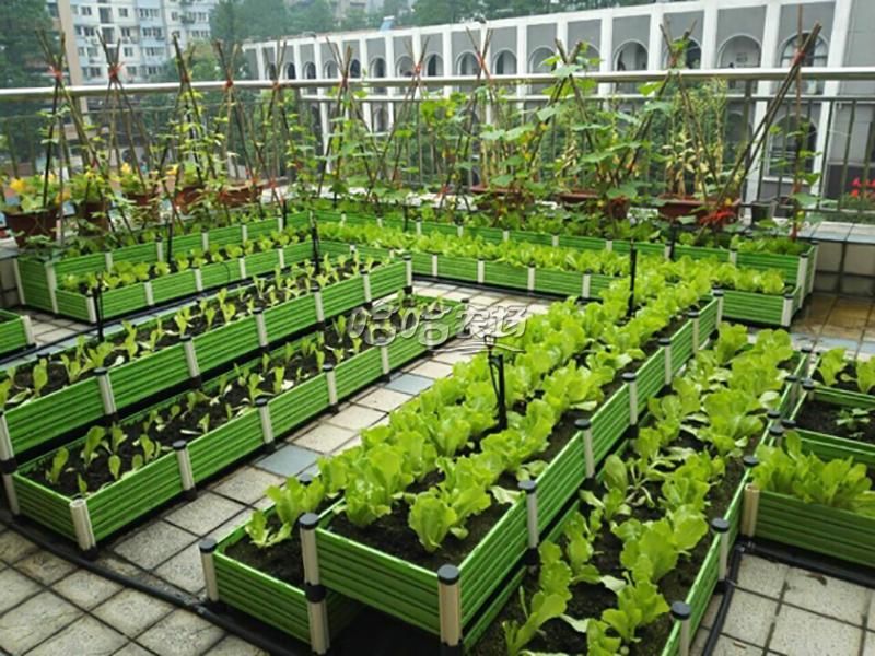 六大加盟政策 1、產品支持 公司懶人種菜系統一套配置,包括:專利種植箱,自主研發有機營養栽培土,有機無機復混肥,高校合作提供的高產量優質菜種,自主研發的自動(定時、定量)噴灌系統等硬件配套設備的支持。 '由具有二十多年種植經驗的農藝師團隊實踐編寫的《哈哈農場常見蔬果植手冊》,極具可操作性;隨時為客戶提供高質量,簡單的示范性種植服務。 ƒ20多人的產品研發團隊,持續為加盟商提供新產品、新項目的支持。  2、開業支持 無門面特殊要求(只提供一個獨立的辦公室,一
