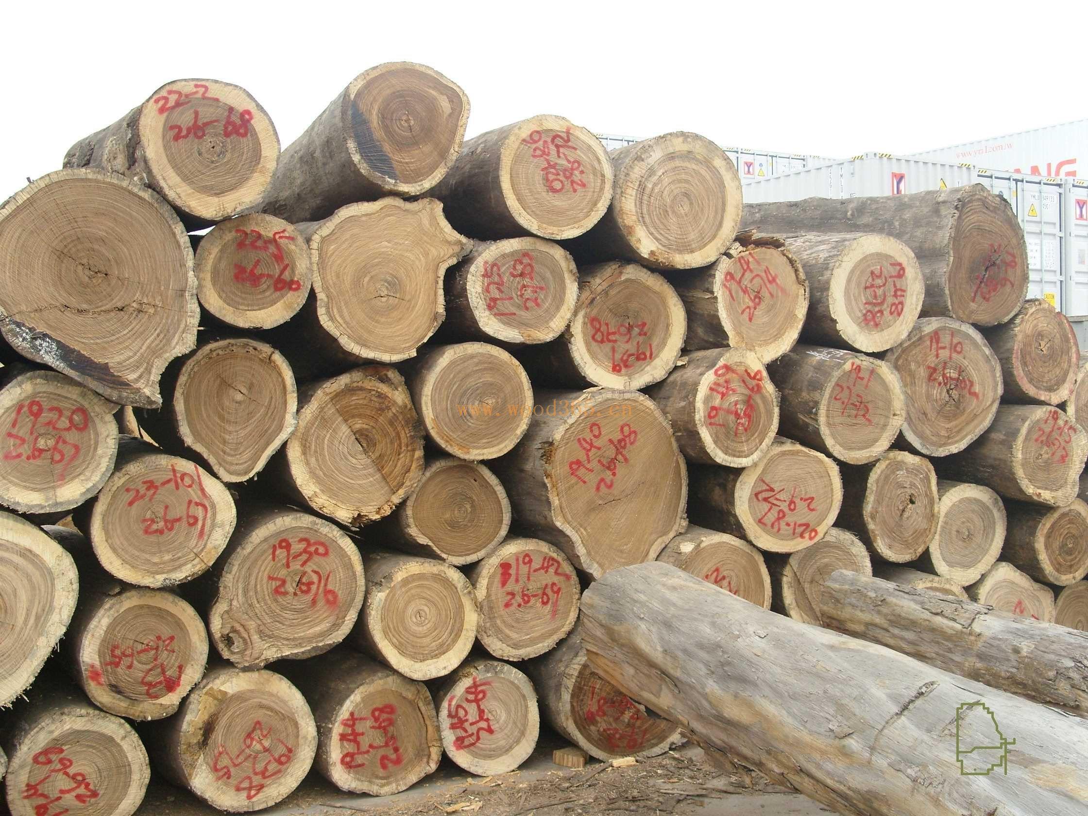 木材进口报关清关(宁波进口)难点是什么?