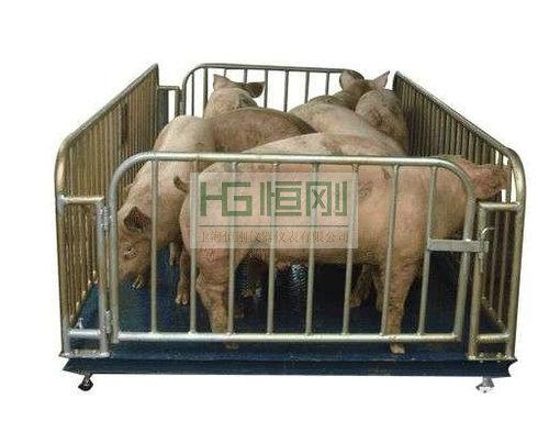 农业户3吨畜牧电子秤