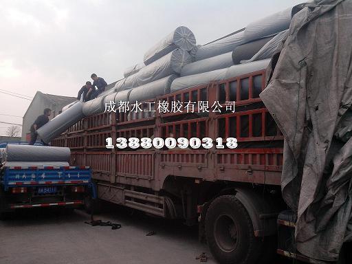 瓦斯隔离板性能、瓦斯隔离板作用、瓦斯隔离板厂家-成都水工橡胶