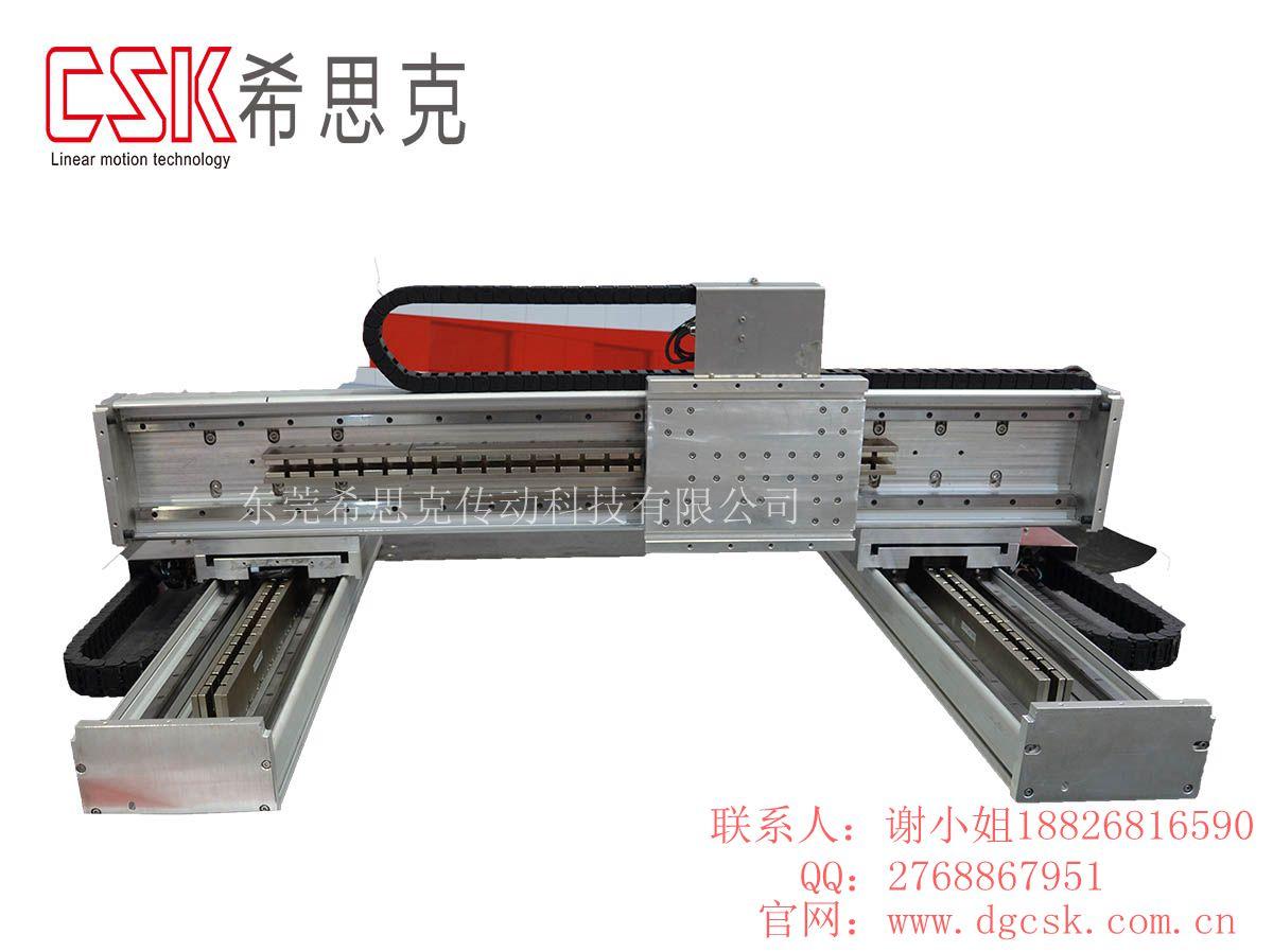 台湾CSK龙门双驱直线步进电机 微型往复推杆伺服减速电机平台定位