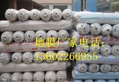 天津塑料布 天津防护隔离塑料布 天津哪里卖塑料布