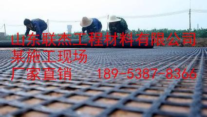 阿里玻纤土工格栅价格,哪里有卖的=18953878366
