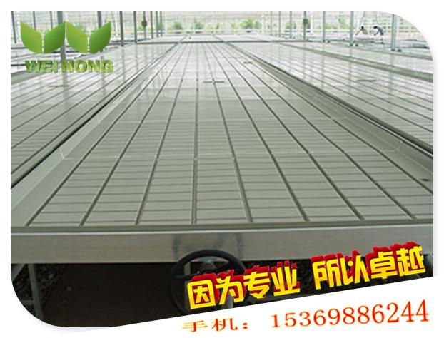 简易潮汐式灌溉苗床 移动苗床