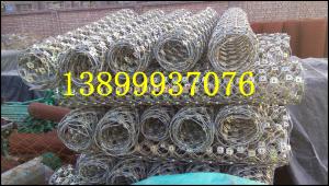 新疆吉木乃RXI-050型环形网生产厂家