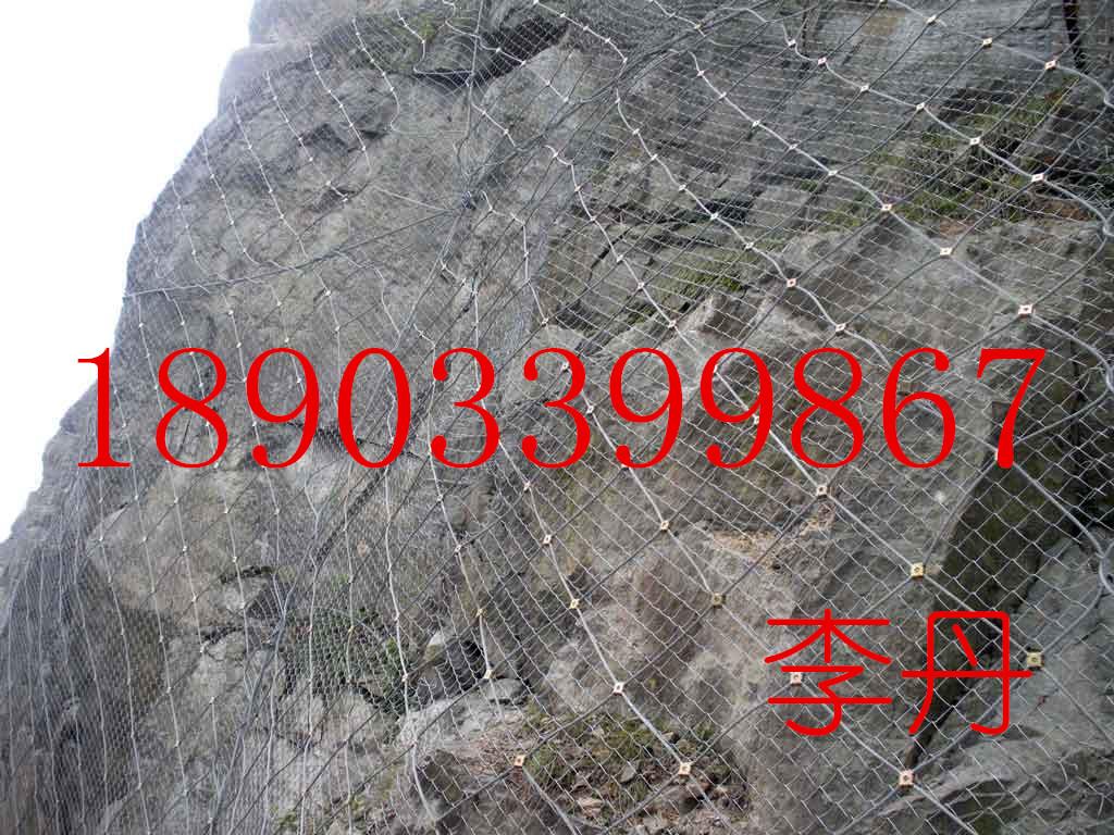 岳阳高速护坡铁丝网 14#边坡植草菱形网桥下2万公里客土喷播挂网