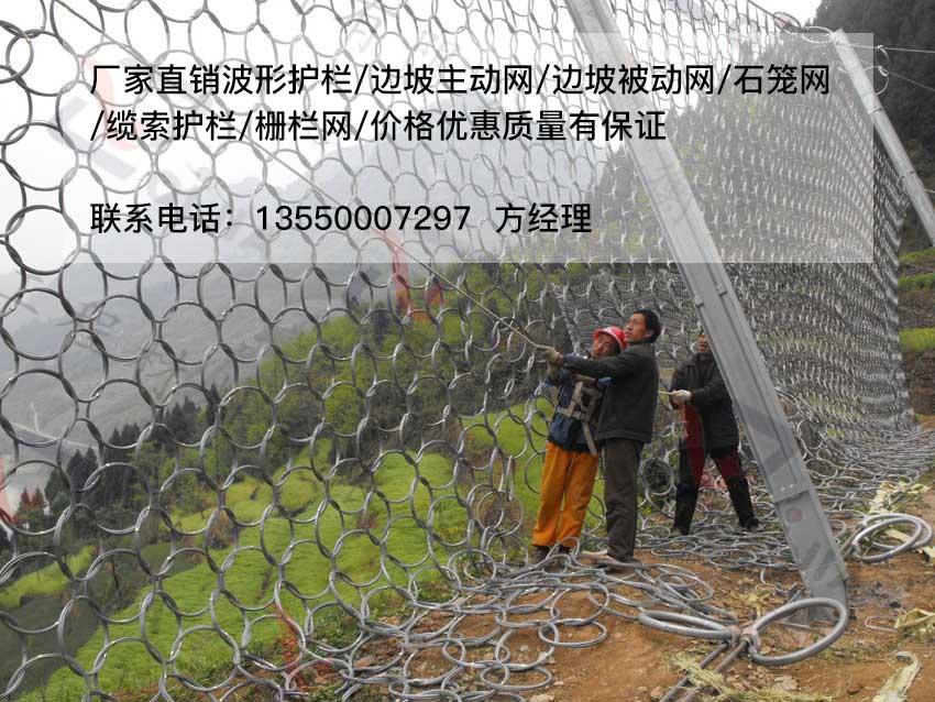 重庆环形网|早期被动防护网生产厂家