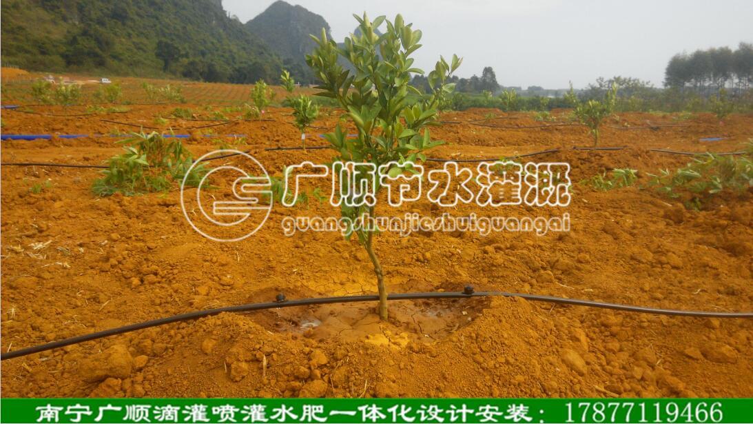 广西灌溉公司广西农业节水灌溉公司广西果树灌溉设计安装南宁灌溉公司