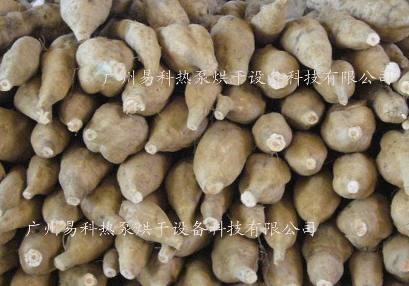 河南省民权县葛根干燥设备