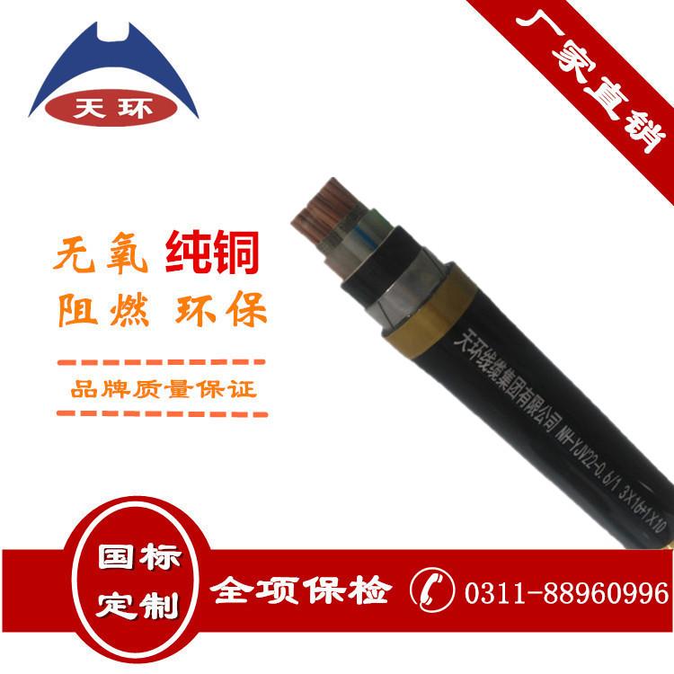 NH-YJV22   耐火电力电缆   天环线缆集团类似竞技宝的网站