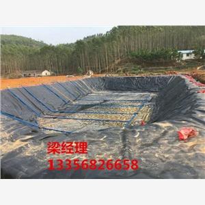 淮南蓄水池,养鱼池防渗膜施工