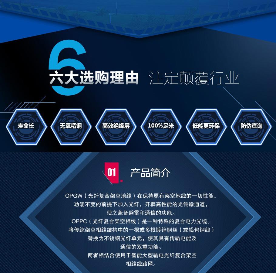 扶沟县ADSS-24B1-100优质光缆