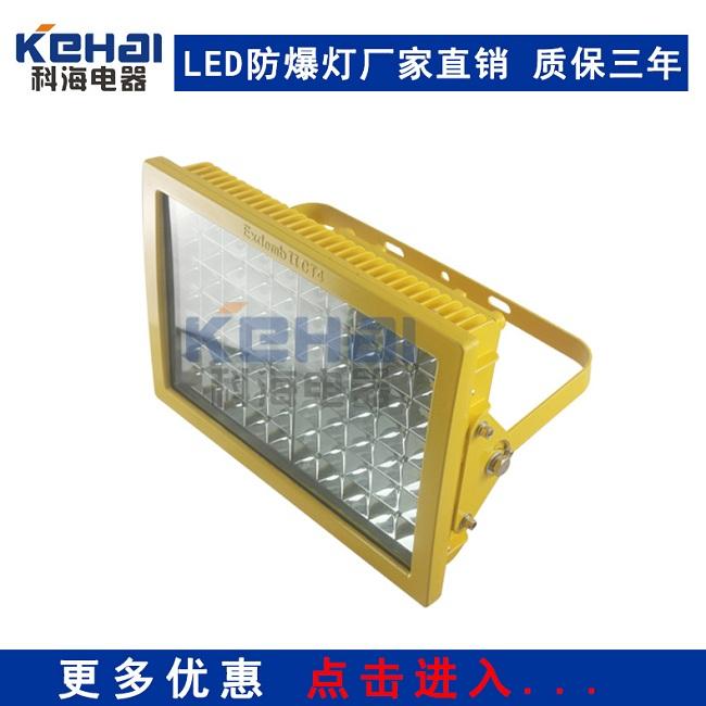 CCd97防爆免维护节能照明灯70W 80W 100W 120W
