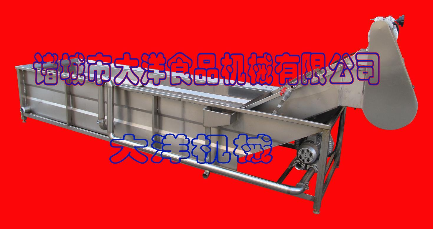 大型连续式气泡清洗机/水浴式山楂清洗设备