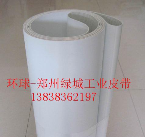 深圳白色PU食品传送带