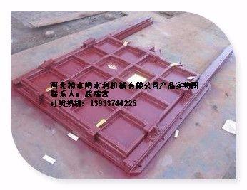 柳州镶铜铸铁闸门