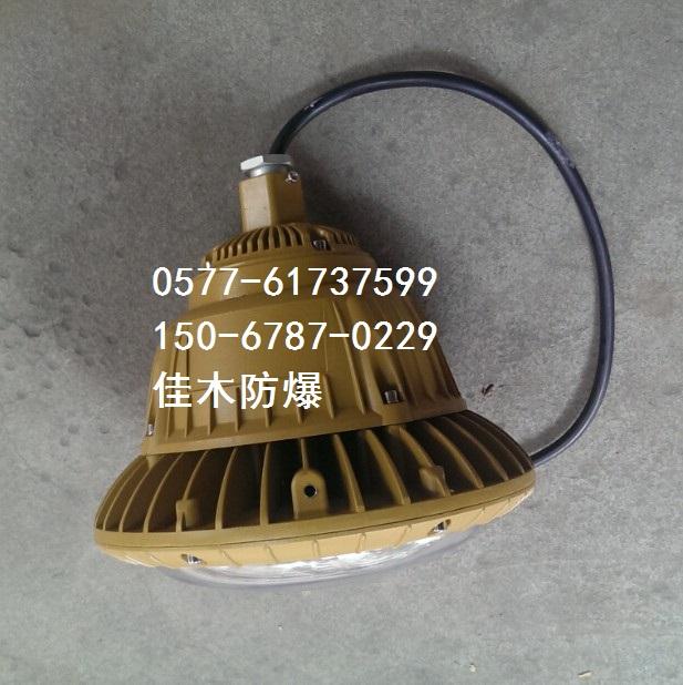 LED60W照明应急两用防爆弯灯BCJ-Z60/b1A