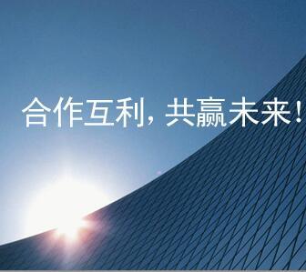 上海都会路进口德国 MAGNEMAG IP6-1