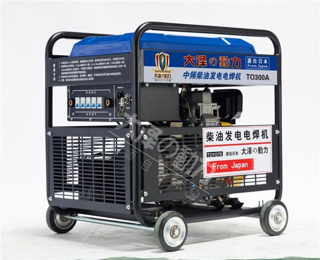 大泽动力300a柴油发电电焊机
