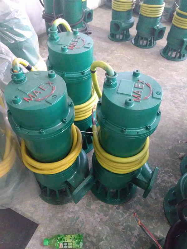 BQS25-35-5.5/N大流量污水排沙泵BQS防爆排沙泵厂家
