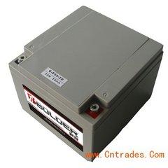 12v24AH奔放BOLDER蓄电池免维护