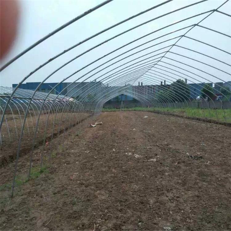 无立柱蔬菜大棚对于墙体的建造要求相对于立柱式大棚要高, 因为其整个棚面均采用钢架支撑,钢架上端通过后砌水泥柱子与后墙相连,其总体的重量明显比有立柱蔬菜大棚的竹竿钢管骨架重量要重。 5育苗棚详细信息: 育苗温室是专供繁殖和培育各种幼苗的温室。可以分为花卉育苗温室、蔬菜育苗温室、林木育苗温室,根据育苗的种类不同,温室再设计上和配套设施上也各不相同。 育苗温室特点: (1)育苗温室的保温性能好,对于温、湿度的调控自动化程度和调控精度要求也比较高; (2)育苗温室透光性能好。透光性主要由两个因素决定,其一是温室的