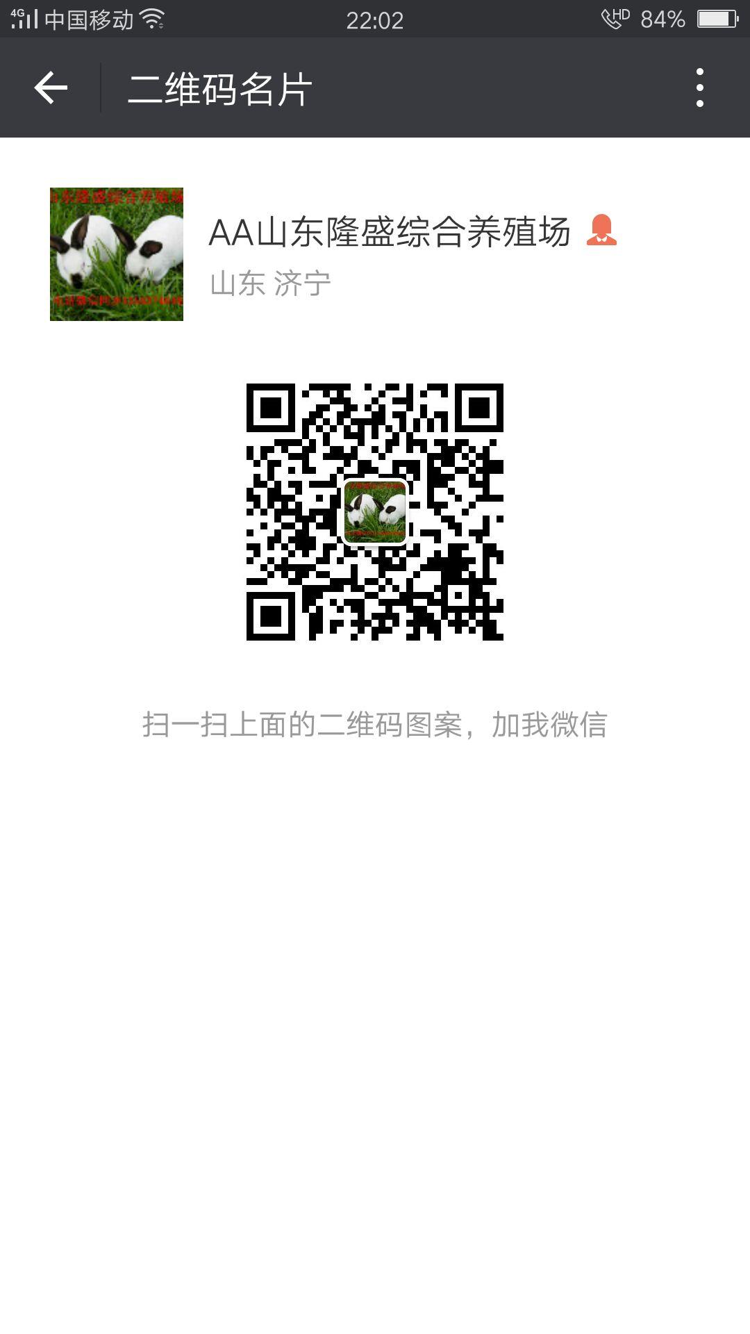 锦州肉兔商品兔价格