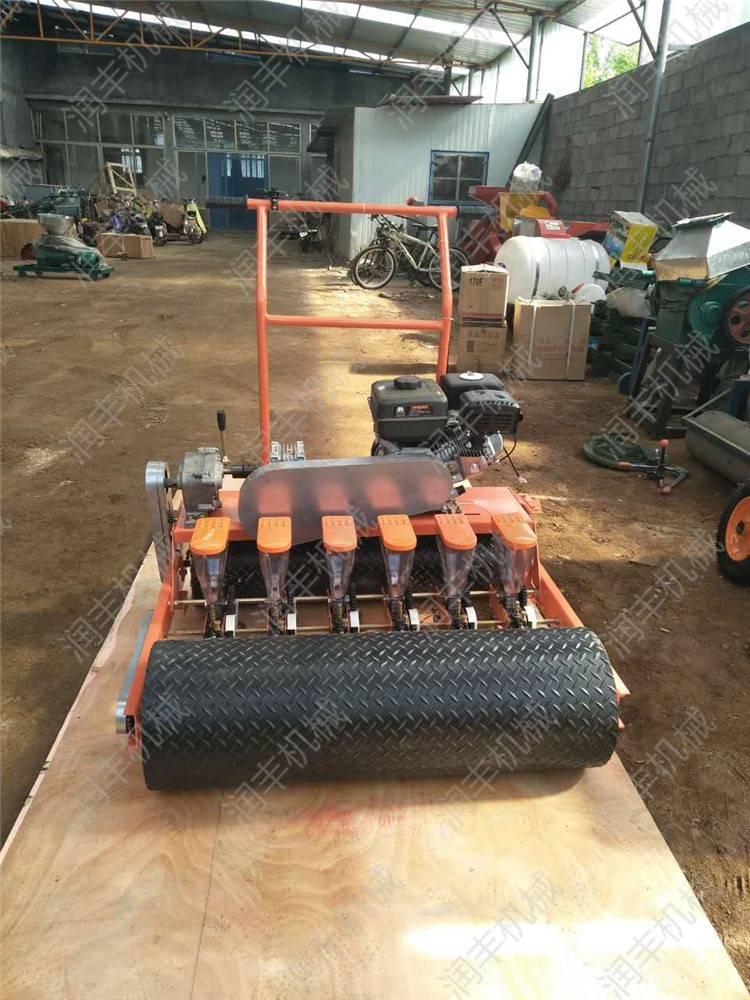 四轮车带蔬菜播种机 多功能手推蔬菜播种机