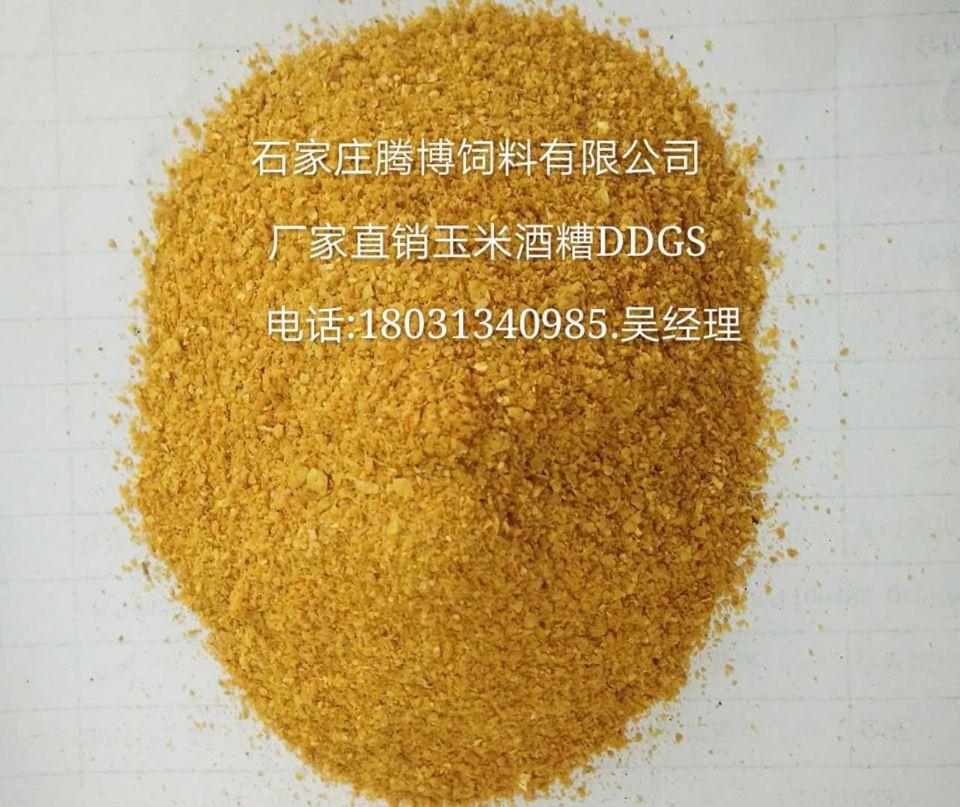 河北石家庄腾博饲料供应:国产DDGS+进口DDGS 各种饲料原料
