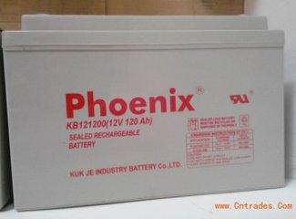 原裝 Phoenix鳳凰蓄電池