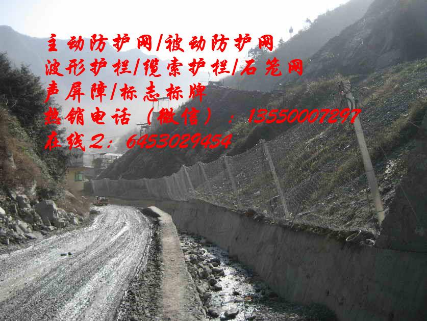 重庆开县|主动防护网|厂家热销电话