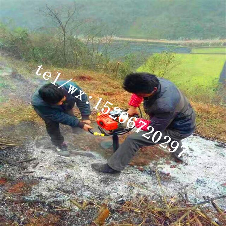 龙岩 电杆用打坑机苗木种植机械 植树挖坑机