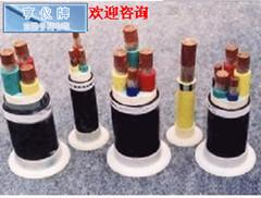 亨仪牌电缆DJFPF-2高温计算机电缆质量