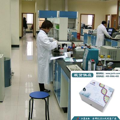 细胞周期素A ELISA检测试剂盒(种属全)说明书
