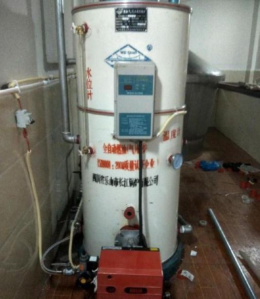 酿酒专用蒸汽锅炉