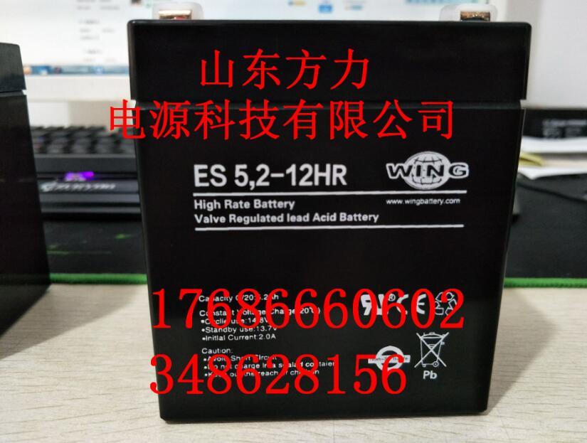 WING蓄电池es5.2-12密云县供应商