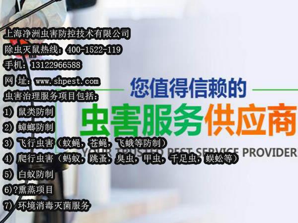 上海杀虫,上海杀虫公司,上海杀虫服务